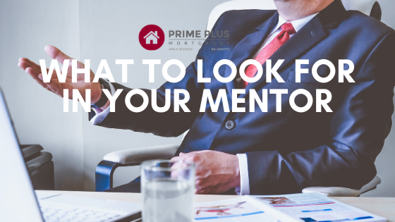 qualites to look for in a real estate inesting mentor